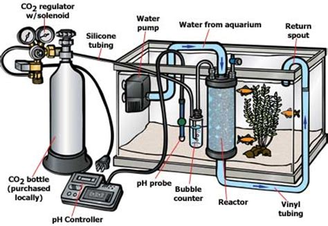 aquarium equipment set up how to set up a fully automatic co2 injection system