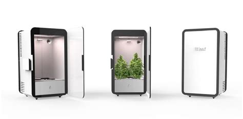 un placard connect 233 pour faire pousser du cannabis buzz insolites