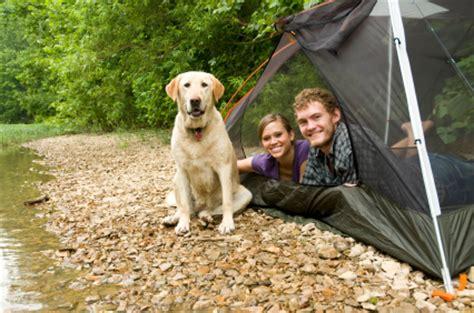 Dogfriendly Holidays, Caravans And Camping Pitchupcom