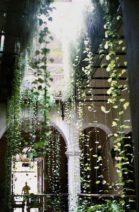 hanging gardens in your home interiorholic