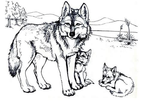 Berühmt Wolf Bilder Zum Ausdrucken @xe42 Startupjobsfa