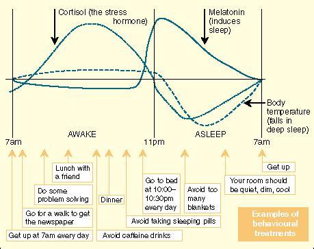Sleep Wake Cycle by Sleep Wake Cycle Many Teen Tiffany Teen Free Prono