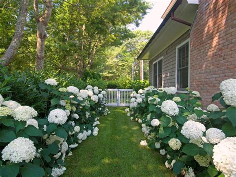 Pictures Of Formal English Gardens Diy
