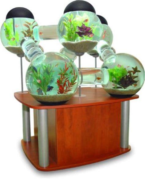 des aquariums originaux blognature fr