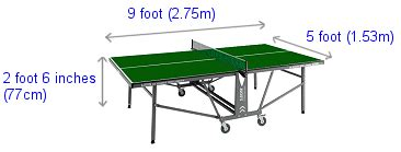 professional table tennis players related keywords professional table tennis players