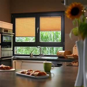 Plissee Für Große Fenster : fenster sichtschutz ~ Markanthonyermac.com Haus und Dekorationen