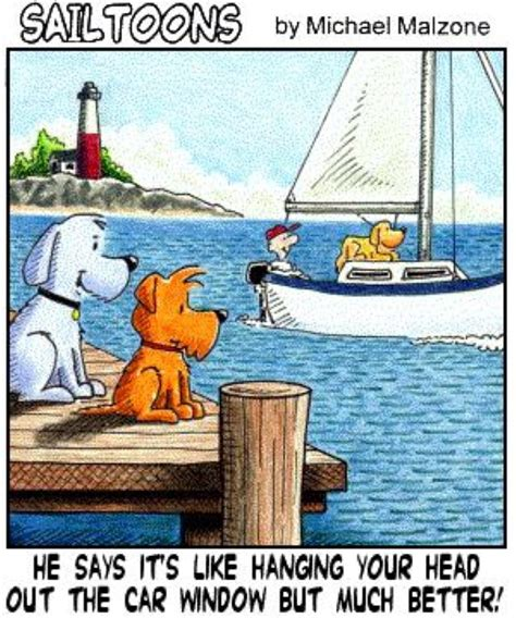 Boat Dog Quotes by Funny Sailing Quotes Quotesgram