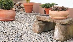 Tragehilfe Für Kübelpflanzen : steingarten anlegen gestalten ideen bilder beispiele ~ Markanthonyermac.com Haus und Dekorationen