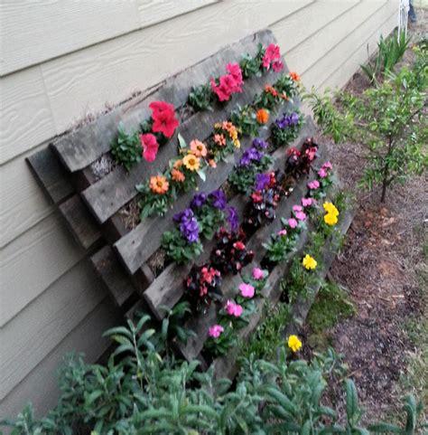 jardinage de fleur sur soin d orchid 233 es