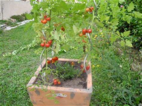 cultiver sur balcon sur sa terrasse ou hors sol jardiner avec jean paul